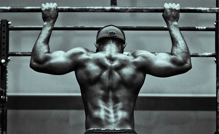 Muscle Gain Science